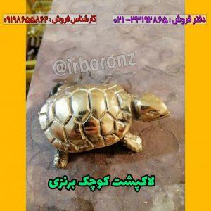 لاکپشت کوچک برنزی